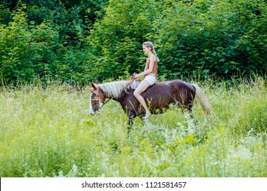 Beautiful woman on a horse. Horseback rider on summer meadow, green backgound. Riding lesson and leisure concept.