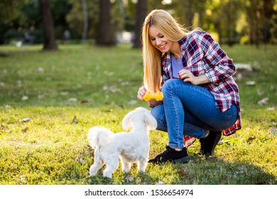 Beautiful woman is playing  with her Maltese dog in the park.
