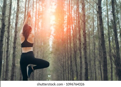 Beautiful woman practicing yoga pose in the spruce forest nature autumn standing rear view healthy lifestyle on summer relaxation.