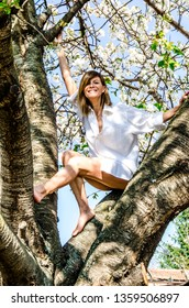 Beautiful woman sitting in the spring tree. Young woman in spring orchard.