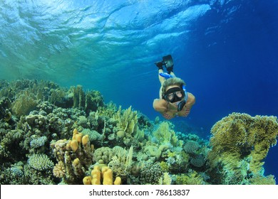 Beautiful Woman snorkeler explores coral reef