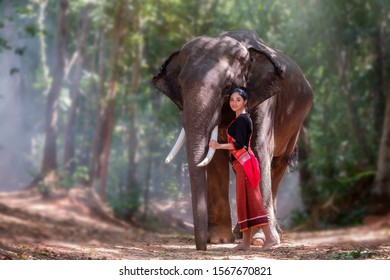 Beautiful woman stand hugging the big elephant in jungle scenery and sunlight rays