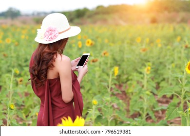 beautiful woman using smart phone while on holiday vacation among flowers field in nature (this image for relaxation with technology background concept)
