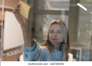 Beautiful woman using sticky notes. Portrait of university student studying, working project, exam preparation, learning language, planning strategy using scrum at workplace. Agile. Brainstorming