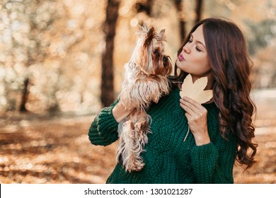 Beautiful woman walk with york terrier in the autumn park