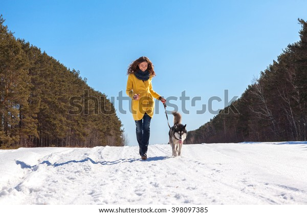 beautiful woman in yellow coat walks in the winter snow-covered wood, lady and a huge fluffy husky walk in nature in spring