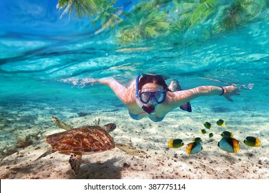 Beautiful women snorkeling in the tropical sea