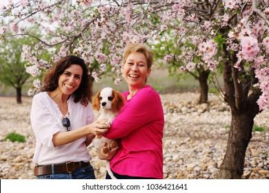 beautiful women walking in spring apple garden