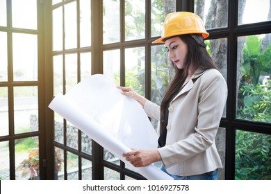 Beautiful women working the industry, check building building chart.