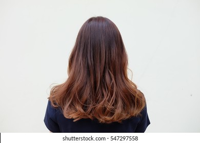 Beautiful women's hair with brown ash color,Gradient highlight and curly hairstyle. side view on white background.