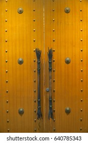 A beautiful wooden door with handle. Texture and background.