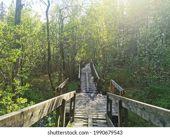 A beautiful wooden road with a fence in a wonderful park, Larvik, Norway