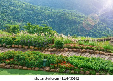 Beautiful wooden walkway.Wooden walkway at Sunrise. Background. The wooden walkway on the Mount. Wooden walkway beautiful morning. Flower garden.Khao Kho Mountain view.