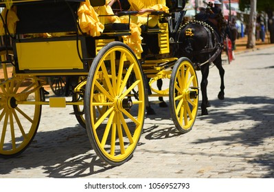 The beautiful yellow carriage pulled by beautiful horses