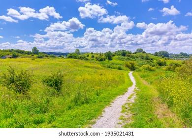 Beautiful yellow colored fields under a blue sky in Summer season. Buytenpark Zoetermeer, the Netherlands