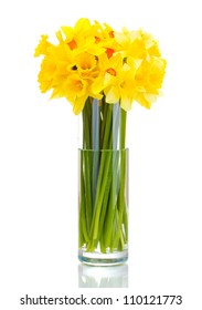 beautiful yellow daffodils in transparent vase isolated on white