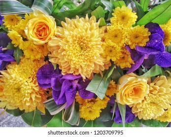 beautiful yellow flower.