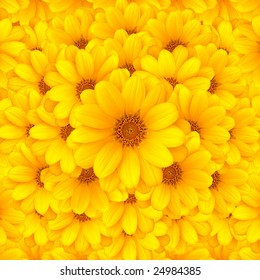 Beautiful yellow flower background