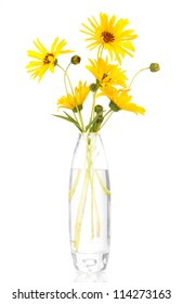 beautiful yellow flowers in vase isolated on white