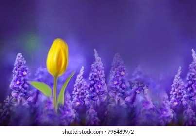 Beautiful yellow tulip in a field of lavender close-up in nature, hand-painted watercolors. Gorgeous bright colorful violet violaceous lilac background spring template with copy space.