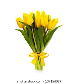 Beautiful yellow tulips over white