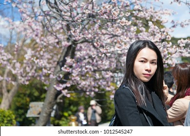 Beautiful young asian woman enjoying with cherry blossom on spring in Kamakura Kanagawa Prefecture, Japan