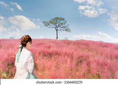 Beautiful young asian woman traveler in Korean national dress in red kochia hill at Haneul Park Seoul,South Korea.