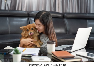beautiful young asian woman working remotely from home and smiling while lying, has good relationships with with a funny assistant dog pet, home work pets concept