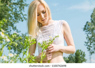 Beautiful young blonde girl in field picking daisy in hand, white, transparent dress, blurred background