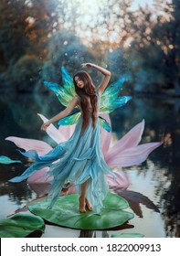 Beautiful young fantasy woman in image river fairy dances on water pink lily flower. long silk dress flies in wind motion butterfly wings magic shiny. Art Girl pixie. Background dark nature, blue lake