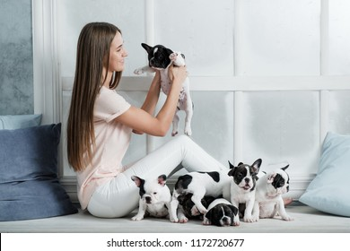 A beautiful young girl sits on the windowsill of a white window and holds a lot of small puppy of a French bulldog dog.
