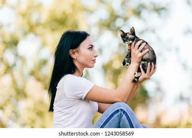 beautiful young girl sits sideways and holds small cat in front of her face. Beautiful woman with tricolor kitten in her hands