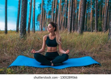 Beautiful and young girl sitting on rug in the lotus position. Practicing yoga in asana position. The concept of healthy lifestyle or hobby. Reach Nirvana, a woman without stress. Summer forest.