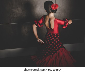 beautiful young hispanic flamenco dancer dancing flamenco, back view