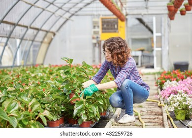 beautiful young lady in plant nursery