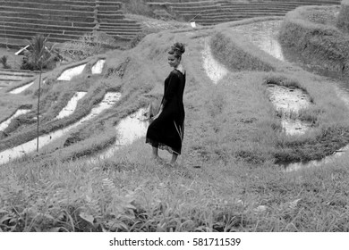 Beautiful young lady in a rice field in Bali