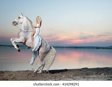 Beautiful young lady riding a white horse