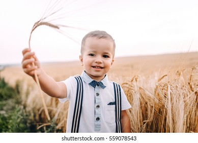 beautiful young mother walking with her young son on the wheat field. mom holds him gently by the hand, hugs and throws up in the sky. ears small hands caress