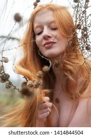beautiful young sexy redhead woman plays smiling with the pine cones and her beautiful gorgeous red hair caught in a pine branch.