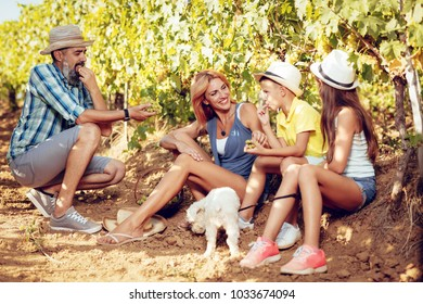 Beautiful young smiling family of four having fun at a vineyard.