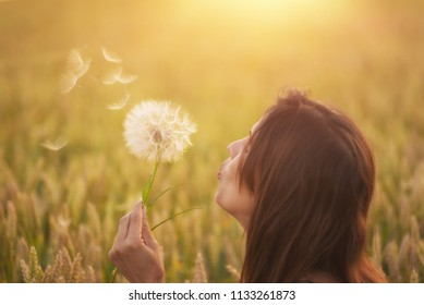 Beautiful young woman blows dandelion in a wheat field in the summer sunset. Beauty and summer concept