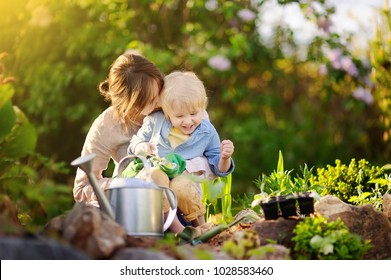 Beautiful young woman and her cute son planting seedlings in bed in the domestic garden at summer day. Garden tools, gloves and watering can outdoors. Gardening activity with little kid and family