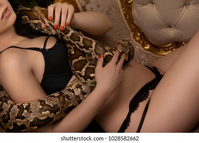 Think, Burmese python with nude girl apologise, but