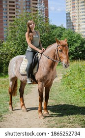 Beautiful young woman on a brown horse in a summer downtown near a multi-storey house.