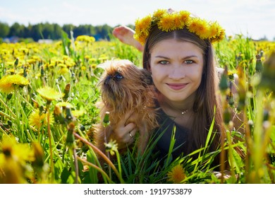 Beautiful young woman on a field with green grass and yellow dandelion flowers in a sunny day. Girl with small dog on nature