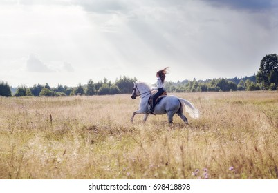 Beautiful young woman riding a horse on the field. Sideways to the camera. Freedom, joy, movement