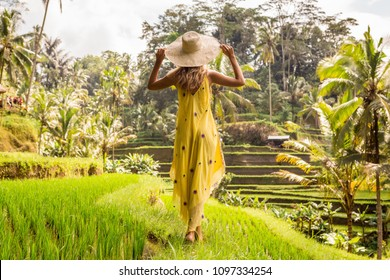 Beautiful young woman in shine through dress touch straw hat. Girl walk at typical Asian hillside with rice farming, mountain shape green cascade rice field terraces paddies. Ubud, Bali, Indonesia.