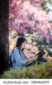 Beautiful young woman sitting under big tree on sunny spring day in park during cherry blossom season, reading a book