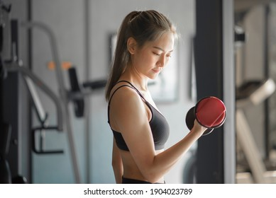 A beautiful young woman in sportswear exercising with dumbbells at the gym, concept of healthy lifestyle, sports, training, wellness, and sport