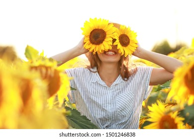 Sunflower Eye Stock Photos Images Photography Shutterstock